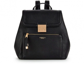 Backpack Art 1255