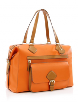 Orange Bag art558