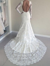 Sheer Long Sleeves Lace Wedding Dresses Backless